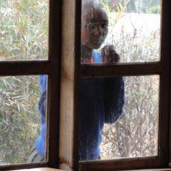 Neugierige Schülerin: Was passiert in der Lupila Secondary School?